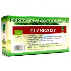 HERBATKA GUZ BRZOZY BIO (20 x 2 g) - DARY NATURY